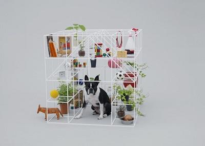 arquitectura perros